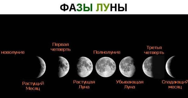 Влияние Луны на человека: как себя вести в лунные дни