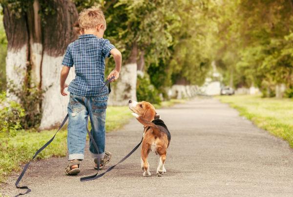 Как правильно воспитать мальчика: советы психолога