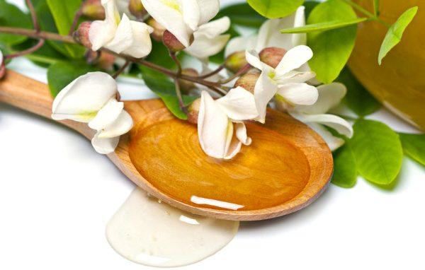 Цветки акации: лечебные свойства и противопоказания