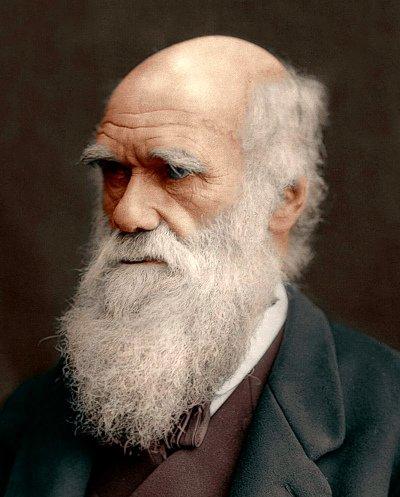 пожилой Дарвин