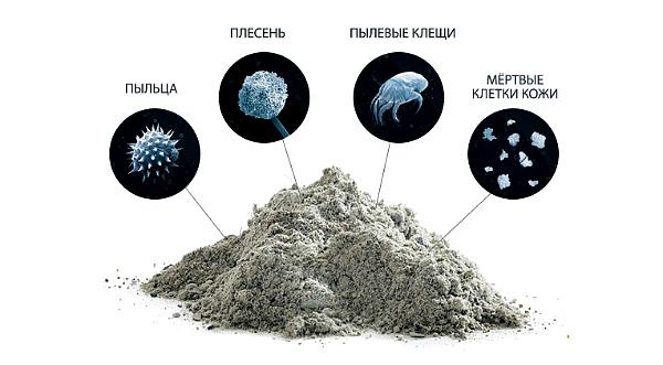 виды пыли