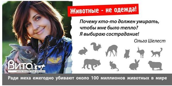 Ольга Шелест с мужем и ребенком. Баннер с Ольгой Шелест в защиту животных