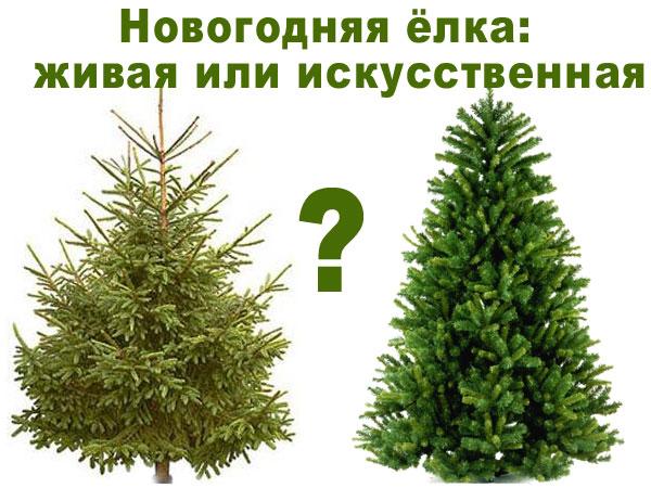 Как правильно выбрать искусственную елку